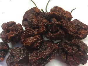 Trinidad Moruga Scorpion Smoked Pods - The Hot Pepper Company
