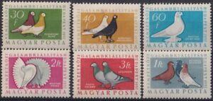 F-EX19001 HUNGARY HUNGRIA MH PIGEON BIRD AVES PAJAROS.