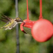 Hummingbird Feeder with Hole Birds Feeding Transparent Pipe Outdoor Garden 40cm