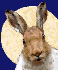 BN original cross stitch  chart of  a moon gazing hare 4