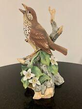 Andrea By Sadek Wood Thrush Porcelain Figurine