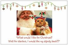 20 CHRISTMAS Humorous CAT with  Santa Post Cards Holiday GREETINGS