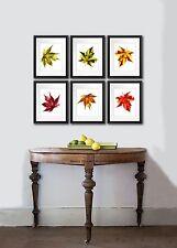 Fall decorations Maple leaf set of 6 Botanical Prints Wall Art Home Decor