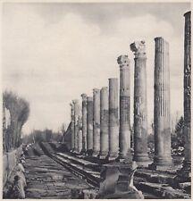 D7640 Le Colonne del Foro di Aquileia - Stampa d'epoca - 1937 vintage print
