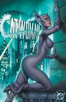 SOLD OUT: CATWOMAN 80TH ANNIVERSARY - CAMPBELL YEAR ONE EXCLUSIVE
