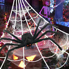 16*16 FT Halloween Decoration Giant Funnel Spider Web For Outdoor Yard Decor US