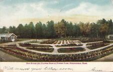Postcard Hot House Flower Beds Springfield MA 1906
