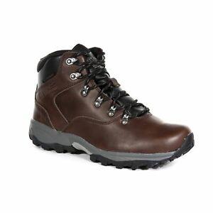 Regatta Men's Bainsford Waterproof Supportive Walking Boots - Brown Peat