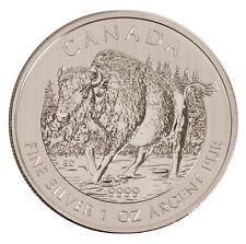 Lot of 10 - 2013 $5 1oz Silver Canadian Wood Bison .9999 BU