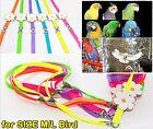 Adjustable Large/Medium Parrot Bird Harness Leash Multicolor Light Soft Fashion