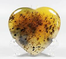 Natural Aquatic Plants Agate Heart Crystal fossil Healing w/ACRYLIC STAND
