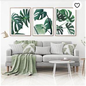 Botanical Leaf Monstera Plant Set Of Three Prints