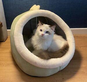 Sweet Cat Bed Warm Pet Basket Cozy Kitten Lounger Cushion Mat Tent Soft Dog Cave