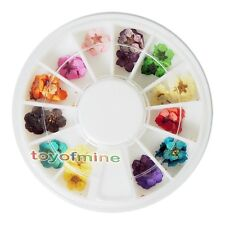 New Dried Dry Flowers Decor Manicure Wheel 36pc Nail Art Tips 12 Colours