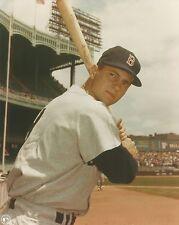 Carl Yastrzemski - Yaz - Boston Red Sox - picture 8 x 10 photo #2