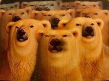 3-D LENTICULAR Trading Card - POLAR BEAR (Ursus maritimus) - FREE SHIPPING