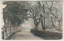 Isle of Wight postcard - Chine Road, Shanklin, IOW - P/U 1911 (A284)