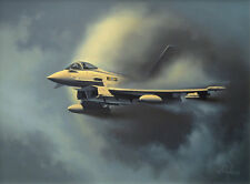 "Eurofighter Typhoon RAF Jet Aviation Painting Art Print 11 Squadron - 14"" Print"