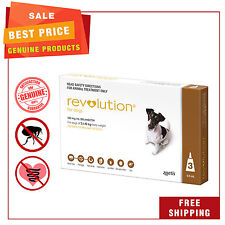 REVOLUTION Heartworm Flea treatment 3 Pipettes for dogs 5.1 to 10 Kg Brown Pack