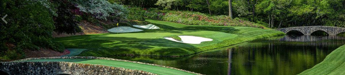 JJs Sunflower Golf
