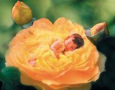 PUZZLE CLEMENTONI 1000 Pièces 30818 Valérie Tabor Smith Lit de roses
