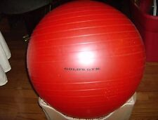 Golds Gym Excercise Ball
