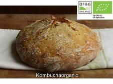 Certified Organic 38 year old Wild Yeast Sourdough Starter Rye Wholemeal Bread