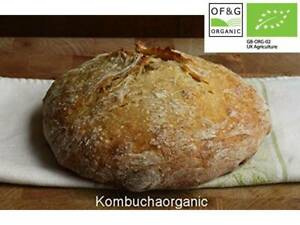 Certified Organic 38 year old Wild Yeast Sourdough Starter Rye Wholemeal Bread