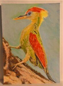 Woodpecker Bird ACEO Original Animal PAINTING by Leslie Popp