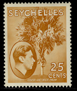 SEYCHELLES GVI SG141, 25c brown-ochre, M MINT. Cat £50. CHALKY