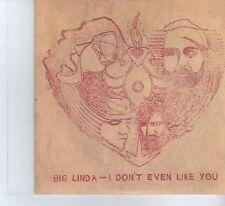 (DF217) Big Linda, I Don't Even Like You - 2007 DJ CD