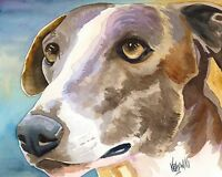 GREYHOUND DOG Watercolor Painting 8 x 10 Art Print by Artist DJ Rogers
