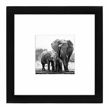 8x8 Black Picture Frame - Matted to Fit Pictures 4x4 Inches or 8x8 Without Mat -