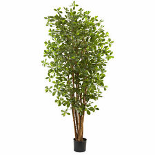 Black Olive Silk Tree Realistic Artificial Nearly Natural 6' Home Garden Decor