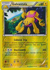 Phantom Forces Rare Pokémon Individual Cards with Holo