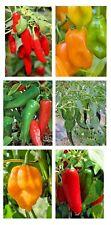 Chilli Pepper Seeds-Mix Messicano