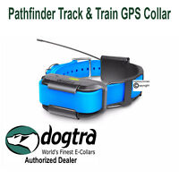 Dogtra Pathfinder BLUE GPS Track Train Collar ONLY - Pathfinder Trainer E-Collar