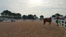 Entry Level 20 x 40m Horse Arena / Horse Manege (Menage) Geotextile Package