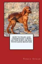 How to Train and Raise a Irish Setter Puppy or Dog with Good Behavior, Brand .