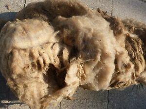 Schafwolle, Rohwolle vom Coburger Fuchsschaf, Biowolle, Das goldene Vlies