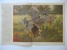 ORIGINAL Blatt Zeitschrift JUGEND 1909 - Schramm-Zittau - Solomko (B371)