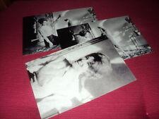 SHEILA LOT DE PHOTOS FORMAT 10*15 N&B - THEME 038 CANICHE - 3 PRISES