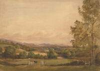 Early 20th Century Watercolour - Landscape with Grazing Cows