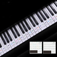 Keyboard Piano SPlticolor Removable Piano and-Keyboard Stickers for 49 61 76 8JN