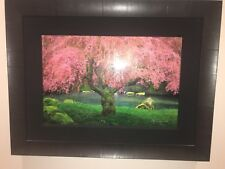 Peter Lik Tree Of Dreams