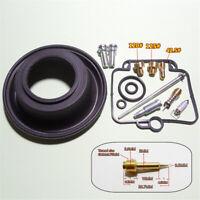 Motorrad Vergaser Reparatur Satz für Suzuki DR350 Goose 350 Einzelzylinder BST40