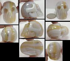 Dendritic Agate CRYSTAL SKULL - Enhance creativity! - S15304