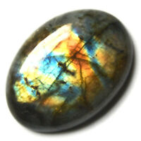 Cts. 59.65 Natural Multi Fire Labradorite Cabochon Oval Cab Loose Gemstones