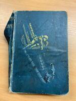 "1899 ""TREASURE ISLAND"" ROBERT LOUIS STEVENSON ILLUSTRATED FICTION H/B BOOK (P4)"