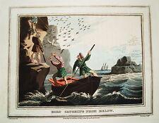 Vogelfang Schottland Schotte  altkolorierter Kupferstich in Aquatinta 1813